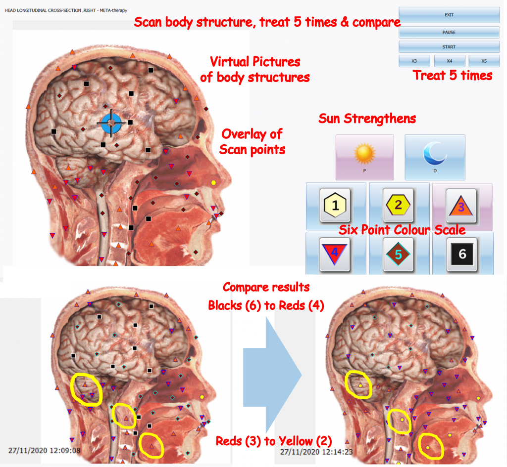 AIO Biophilia graphics